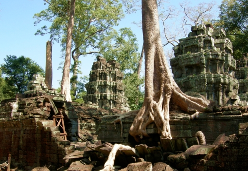 A view from Ta Prohm